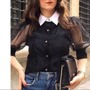 NWT sweet black dots organza top w contrast collar